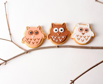 Woodland Owls
