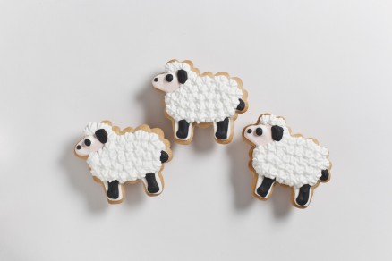 Farm Animals: Sheep